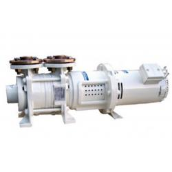 Self-priming DC pumps ACM series